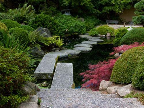 Tạo lối đi trong vườn với một màu xanh mướt | ảnh 15