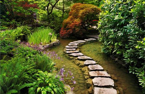 Tạo lối đi trong vườn với một màu xanh mướt | ảnh 26