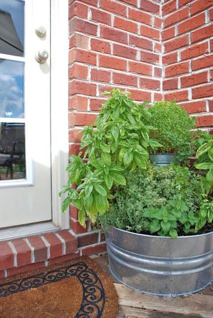 Ý tưởng thú vị để có những góc nhỏ xanh um cây cối trong nhà | ảnh 5