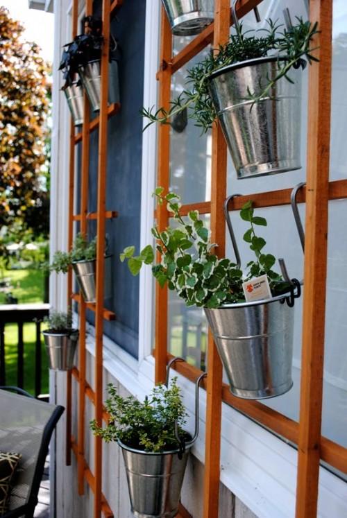 Ý tưởng thú vị để có những góc nhỏ xanh um cây cối trong nhà | ảnh 9