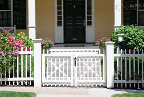 Hàng rào dây hoa xinh xắn cho ngôi nhà của bạn | ảnh 11