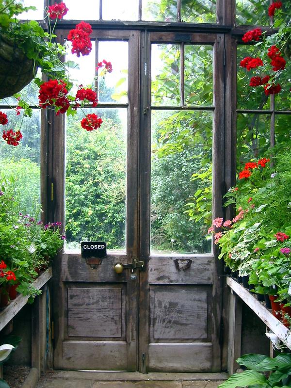 Tạo cho khu vườn đẹp bất ngờ từ cánh cửa cũ | ảnh 2