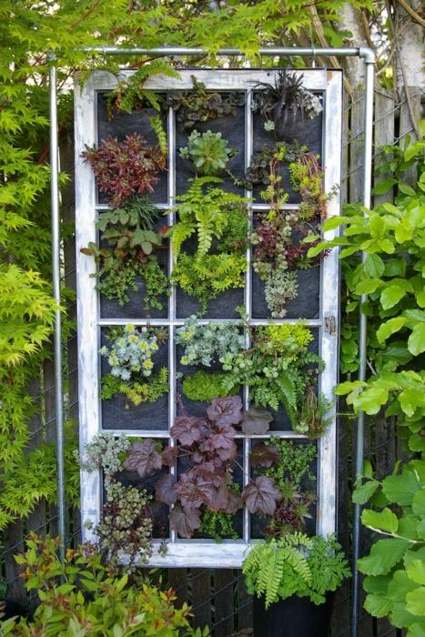 Tạo cho khu vườn đẹp bất ngờ từ cánh cửa cũ | ảnh 12