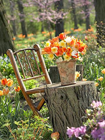 Trang trí góc vườn mùa hè rực rỡ | ảnh 4