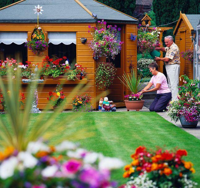 Tạo vẻ đẹp ấn tượng cho vườn nhà | ảnh 1