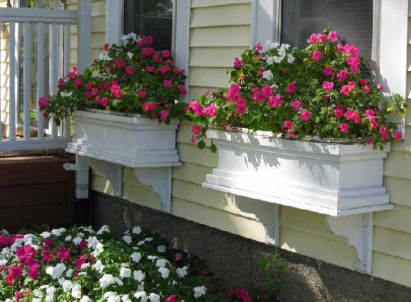 Sắc hoa rực rỡ cho những ô cửa sổ | ảnh 3
