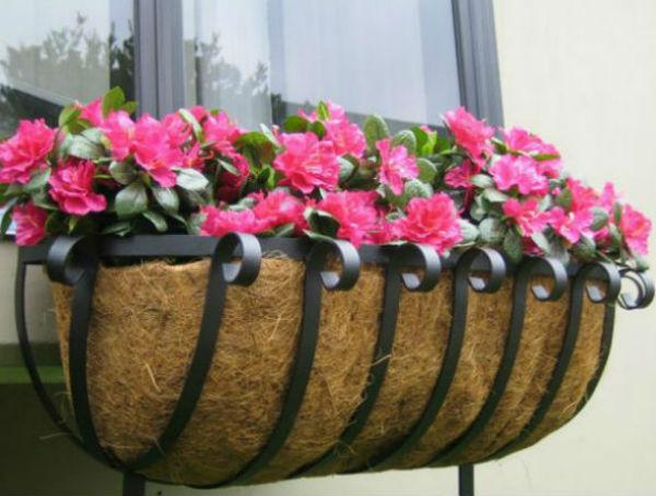 Sắc hoa rực rỡ cho những ô cửa sổ | ảnh 4