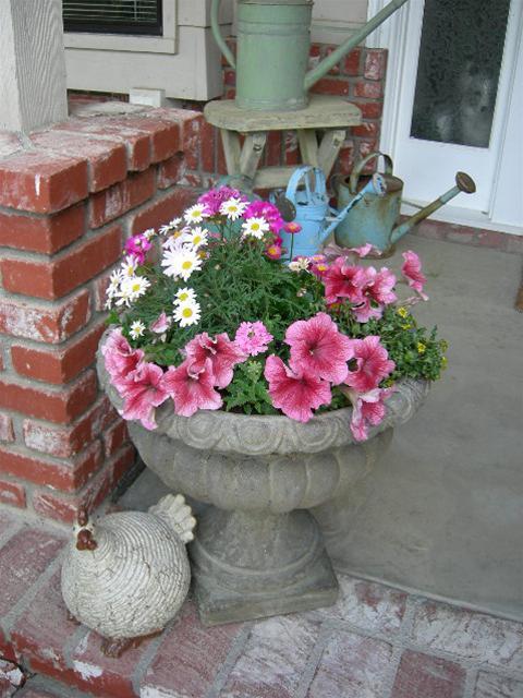 Khúc biến tấu hoa treo | ảnh 7
