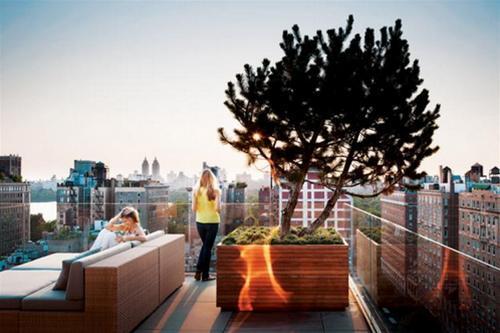 Bài trí khu vườn đẹp cho sân thượng | ảnh 1