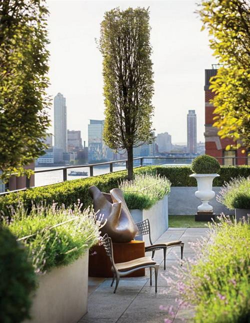 Bài trí khu vườn đẹp cho sân thượng | ảnh 3