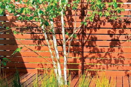 Bài trí khu vườn đẹp cho sân thượng | ảnh 11