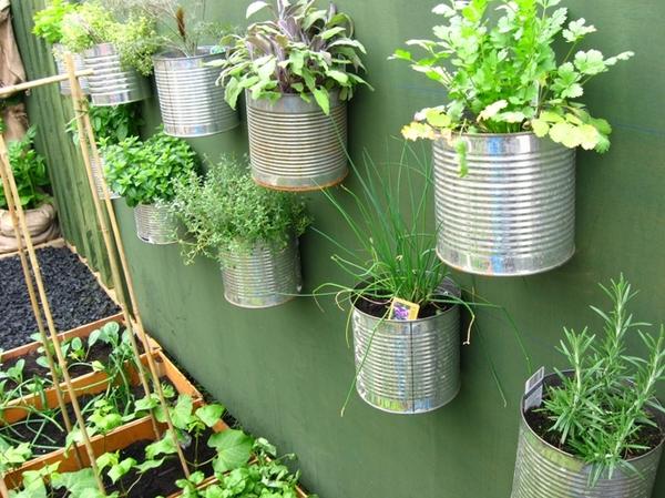 Tự tạo vườn rau xanh mát mắt cho nhà phố | ảnh 4