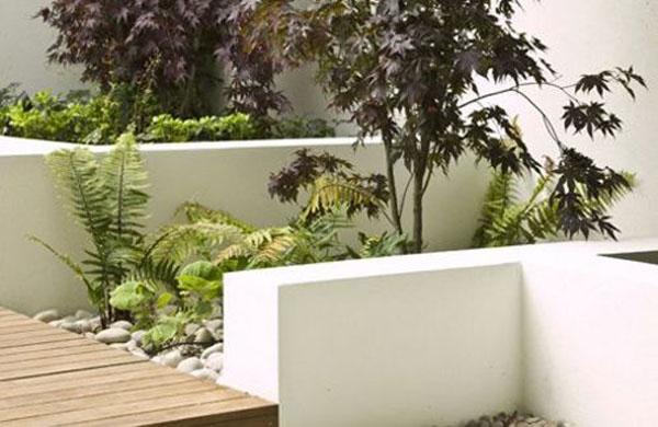 Thiết kế vườn trên mái nhà | ảnh 2