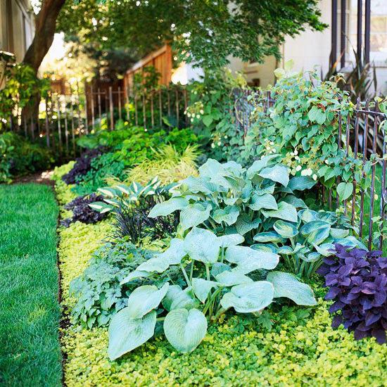Không gian thoáng mát cho ngoại thất nhà vườn | ảnh 4