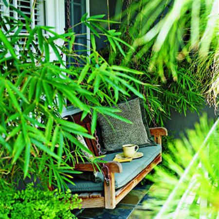 Dùng tre, trúc làm đẹp sân vườn | ảnh 3