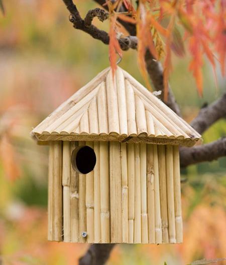 Dùng chuồng chim để...trang trí sân vườn | ảnh 6