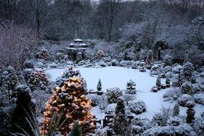 Thăm khu vườn tuyệt đẹp ở Anh   ảnh 10
