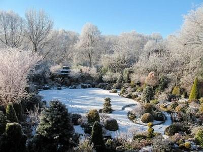 Thăm khu vườn tuyệt đẹp ở Anh   ảnh 11