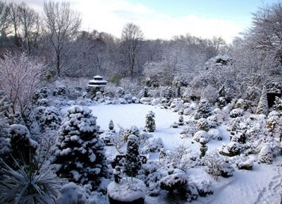 Thăm khu vườn tuyệt đẹp ở Anh   ảnh 12