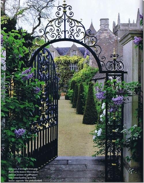 Cổng hoa rực rỡ đón khách vào nhà | ảnh 5