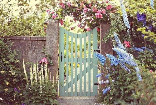 Cổng hoa rực rỡ đón khách vào nhà | ảnh 6