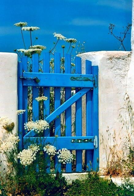 Cổng hoa rực rỡ đón khách vào nhà | ảnh 8