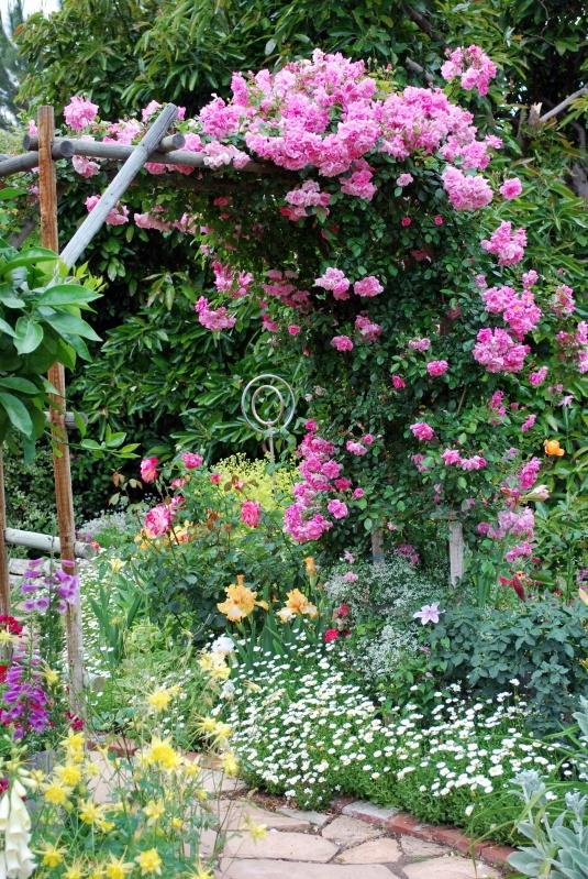 Cổng hoa rực rỡ đón khách vào nhà | ảnh 12