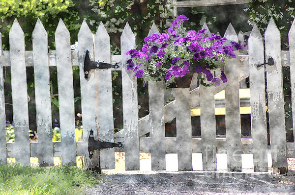 Cổng hoa rực rỡ đón khách vào nhà | ảnh 13