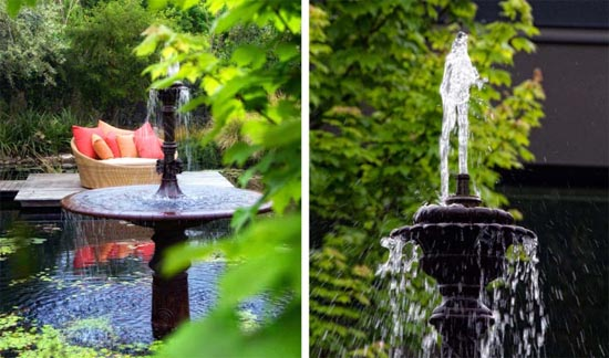 Ao nhỏ trong nhà vườn | ảnh 8