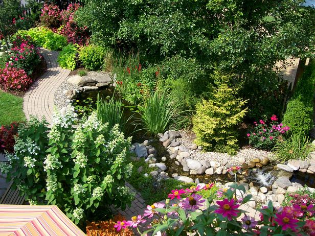 Ao nhỏ trong nhà vườn | ảnh 9